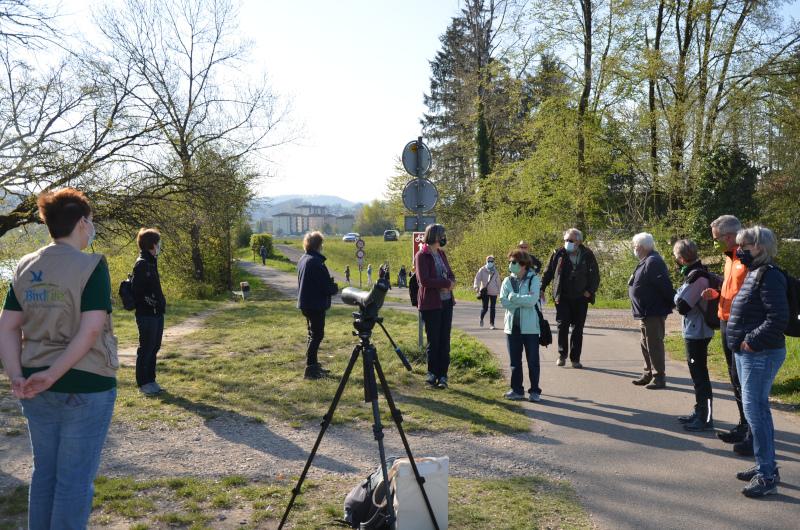 Exkursion - Klingnauer Stausee